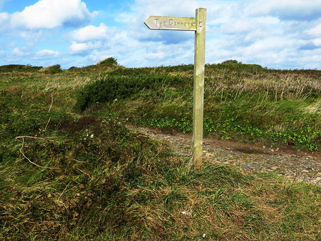 Signpost to the Gannets
