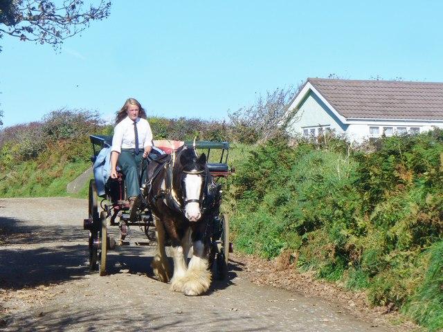 Sark - Horse Carriage