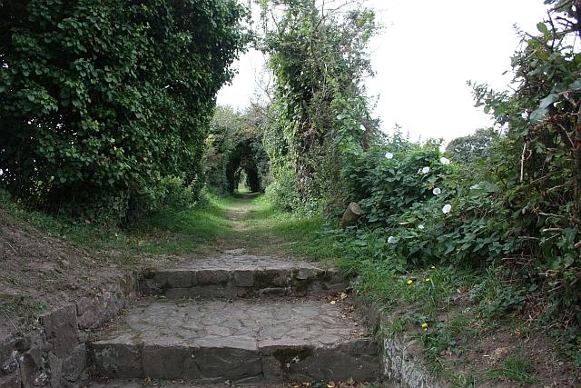 Path to la Pouquelaye de Faldouet