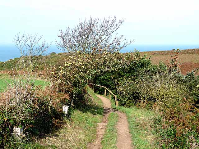 Jersey coast path above the Devils Hole