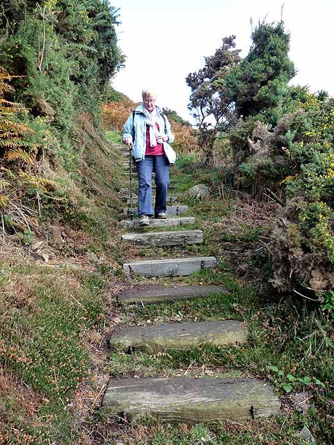 Steps down to Bonne Nuit Bay