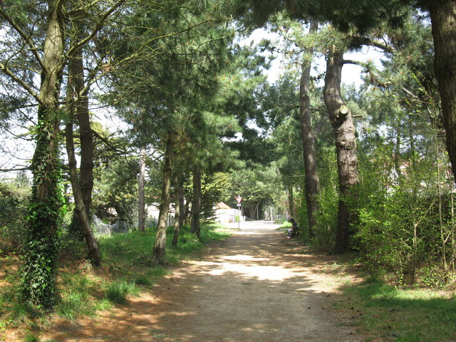 Corbiere Walk, road crossing