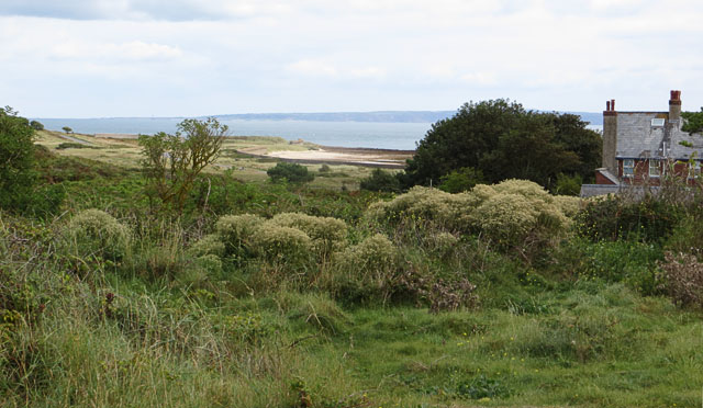 Longis Bay from near the Coastguard Cottages
