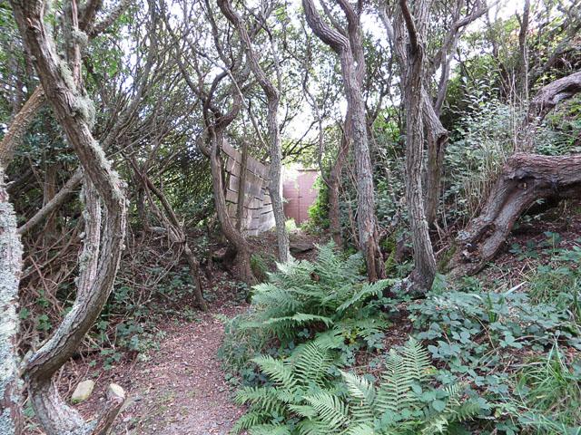 Entrance to the Mannez Pond Hide