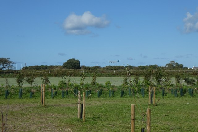 Farmland and aircraft landing