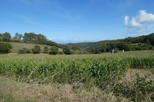 Farmland beside La Rue de Fremont