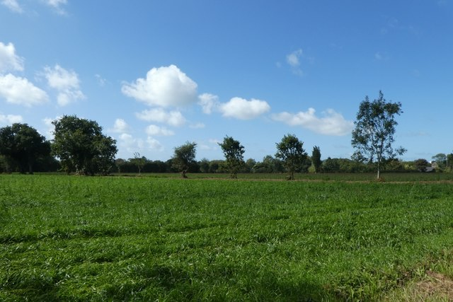 Farmland beside Rue de la Vignette
