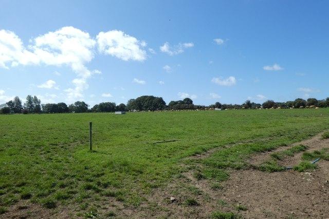Farmland from Rue du Pont