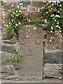 WV6746 : Old Milestone, A5, La Grande Route de St Clement (Ancien jalon) by Alan Roseveer