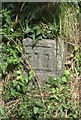 WV3075 : Old Milestone, Forest Road (Ancien jalon) by Tim Jenkinson