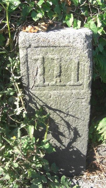 Old Milestone, Route de Cobo (Ancien jalon)